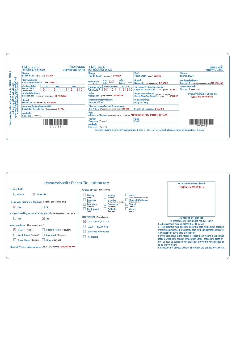 Образец заполнения иммиграционной карточки